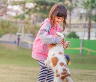 O contato com animais pode reduzir a ansiedade social de crianças com Transtorno do Espectro Autista