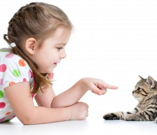 Como ensinar uma criança a cuidar de um pet